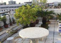 喜欢露台看过来,独家阔绰花园三百平米三房两厅一卫