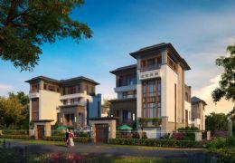 定南修建高速路口北侧450平米6室2厅4卫出售