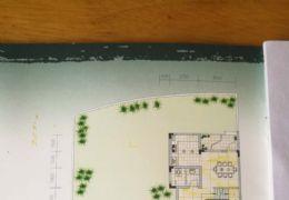 西桥路兰亭半岛310平米5室2厅4卫出售