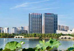 阳明国际中心113平米1室精装出租