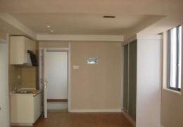 新區一線江景豪華公寓誠意出租拎包入住……