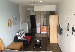 中廷广场31平米1室1厅1卫出租