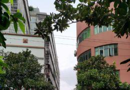 红环路20号学区房143平米3室2厅2卫出售