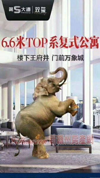 第五大道110平米3室2厅2卫出售_房源展示图0_新manbetx网页manbetx网页网