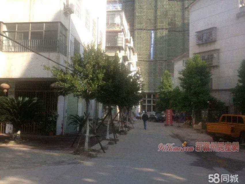 福寿路二室二厅出租(一楼)_房源展示图3_新赣州房产网