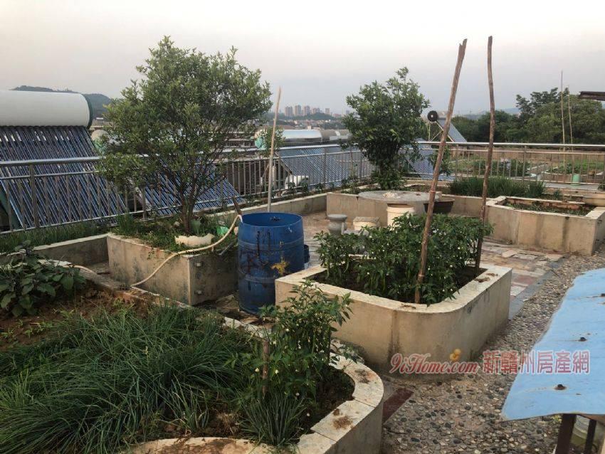 东郊花苑101平米4室2厅2卫出售_房源展示图2_新赣州房产网